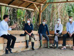 Kesan dan Apresiasi Para Dubes Ikut Tanam Mangrove Bersama Presiden